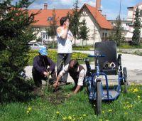 Bővebben: A csíki fogyatékkal élők hozzáfogtak a Szent Ágoston-park kialakításához