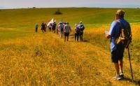 Bővebben: Már lehet jelentkezni a 100 kilométeres csíksomlyói búcsús zarándoklatra