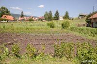 Bővebben: Mezőgazdaság kicsiben: ha ezt termeszti januártól, adómentes jövedelme lehet
