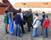 Bővebben: Gyergyószárhegyi lovastanya