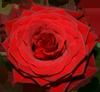 Bővebben: Szent Rita Kilenced élménybeszámoló
