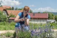 Bővebben: Mária-kert Csíksomlyón a belső békéért