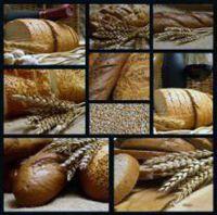 Bővebben: Magyarok kenyere