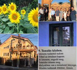 b_300_300_16777215_00_images_stories_Csaba_levelek_Vegyes_moldvabancst20.jpg