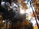 Az ősz utolsó napja Somlyón
