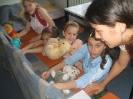 Gábor Arkangyal Gyermekvédelmi Központ