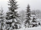 Irány a téli táj