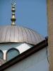 Mecset a Kárpát medencében