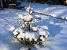 Megjött a tél