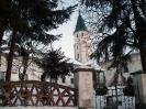 Mikháza 2008.02.