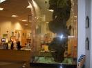 Sarasotai nagy városi könyvtár.