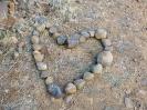 Kedves Szabolcs nevelõ 1000 km-es gyalogútja