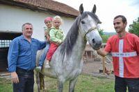 Bővebben: A székely ló megmentése – Az orvos, aki az emberek mellett állatokat is ment