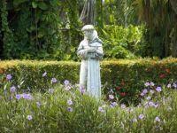 Bővebben: Assisi Szent Ferenc, könyörögj érettünk!