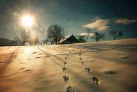 Bővebben: Advent huszonharmadik napja: Szent nyugalom!
